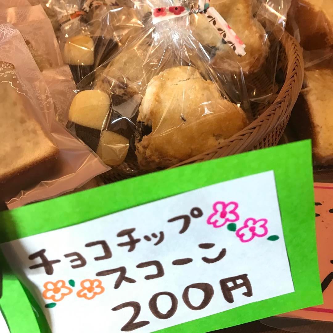 チョコチップスコーン(//∇//)